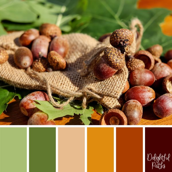 Acorns With A Burlap Bag fall/ autumn color palette