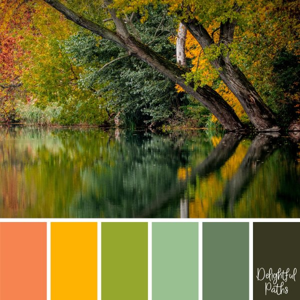 Fall Leaves Reflected In A Peaceful River fall/ autumn color palette