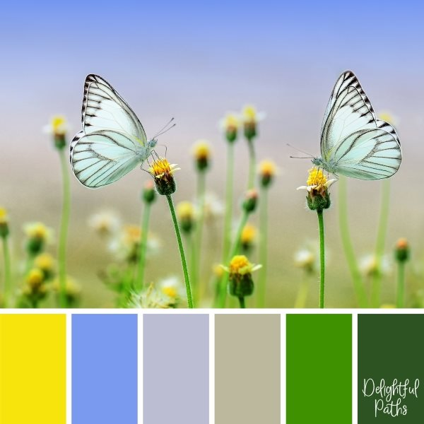 Pair Of White Butterflies In A Meadow Color Palette Inspiration