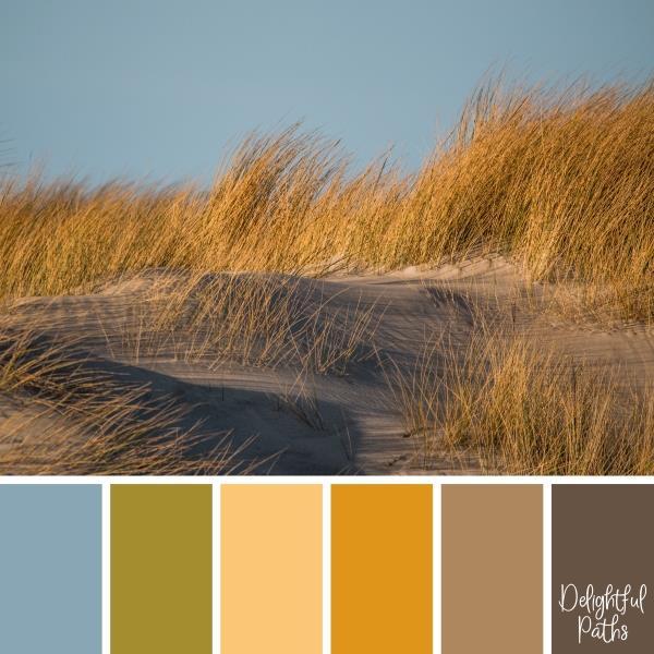 secret rocky cove Coastal Color Palette