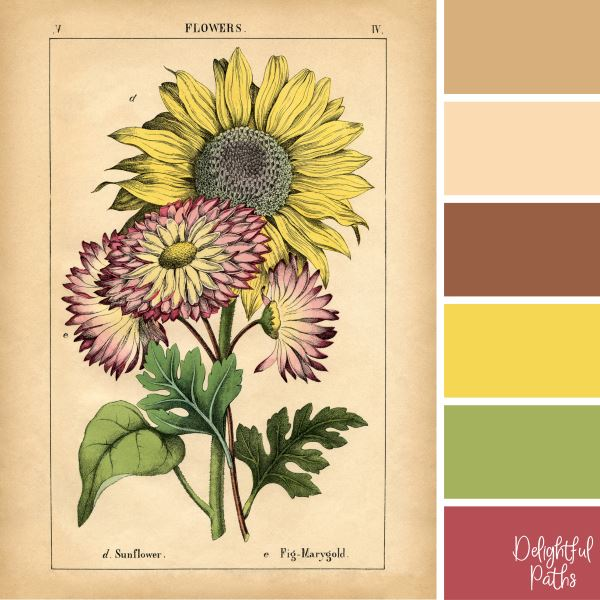 Sunflower and Pink Flowers - vintage color palettes