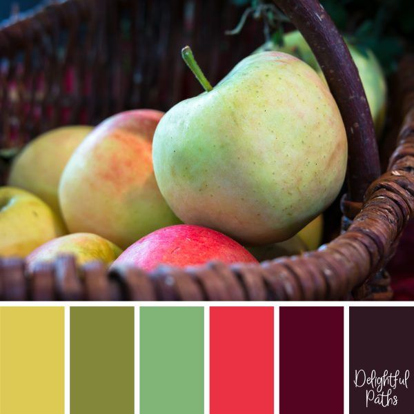 Basket of Ripe Apples - harvest / thanksgiving color palette DelightfulPaths.com