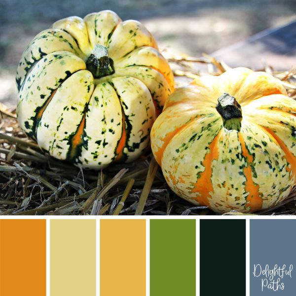 Two Decorative Pumpkins - harvest / thanksgiving color palette DelightfulPaths.com