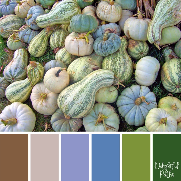 Pile of Gourds - harvest / thanksgiving color palette DelightfulPaths.com
