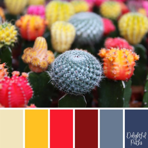 Pretty Cacti Flowers primary color palette DelightfulPaths.com