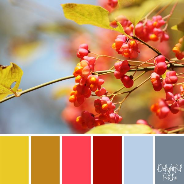 A Bunch of Bright, Red Berries primary color palette DelightfulPaths.com