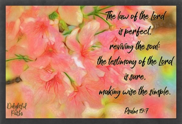 Bible verses on wisdom Psalm 19:7 from DelightfulPaths.com