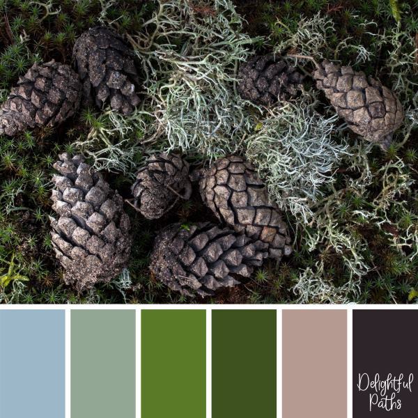Pine Cones and Lichen rustic color palette DelightfulPaths.com