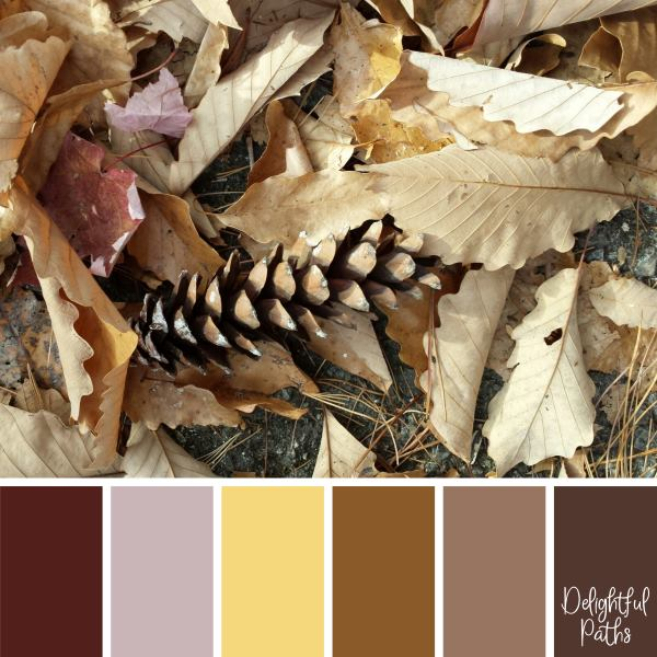 Pine Cone on a Bed of Dry Leaves rustic color palette DelightfulPaths.com