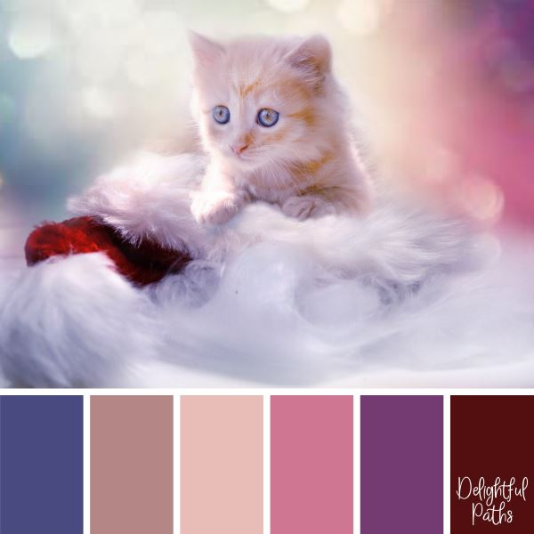 christmas color palette - A Cute Kitten with a Red and White Hat DelightfulPaths.com