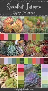 image inspired succulent color palette DelightfulPaths.com