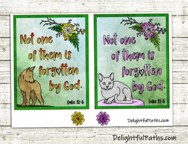 dog & cat sympathy cards luk 12-6 DelightfulPaths
