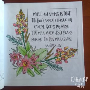 Galatians 3-17 Coloring Book for Adults DelightfulPaths