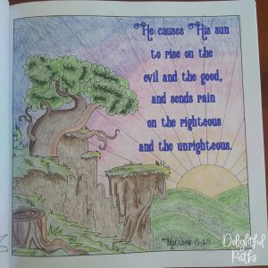 Sermon on the Mount Bible Coloring Book DelightfulPaths Mat 5-45