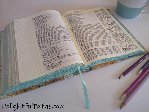 NLT inspire journaling Bible word art DelightfulPaths